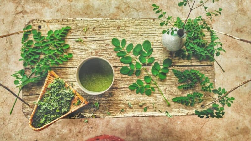 moringa anothertree aspect