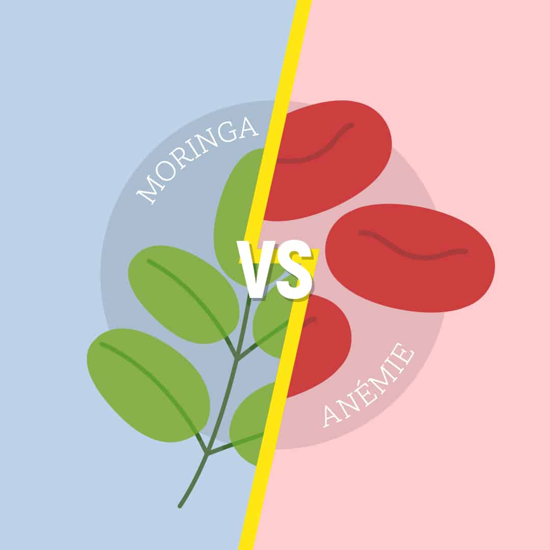Moringa Another Tree vs anameie