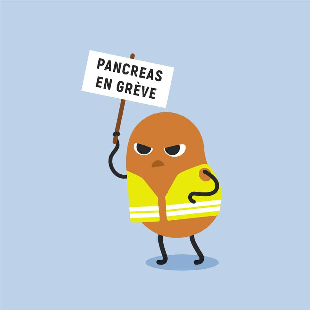 Moringa et diabète, le pancréas cesse de travailler