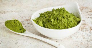 poudre moringa oleifera
