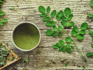 différentes formes du moringa oleifera