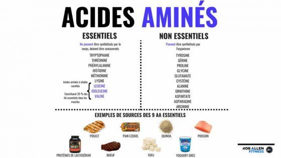 tableau acides aminés essentiels et non essentiels